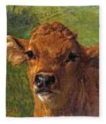 Head Of A Calf Fleece Blanket