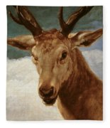 Head Of A Stag Fleece Blanket