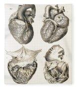 Heart, Anatomical Illustration, 1814 Fleece Blanket