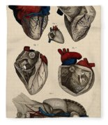 Heart, Anatomical Illustration, 1822 Fleece Blanket