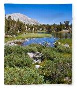 Heart Lake Folaige Fleece Blanket