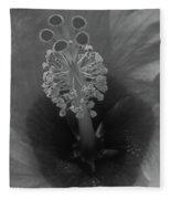 Heavenly Hibiscus Bw 01 Fleece Blanket