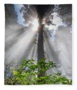 Heaven's Light Fleece Blanket