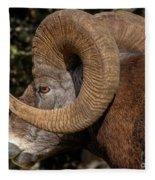 Heavy Horns Fleece Blanket