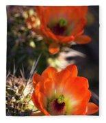 Hedgehog Flowers In Dawn's Early Light  Fleece Blanket