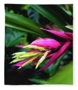 Heliconia Subulata - Wild Plant Series Fleece Blanket