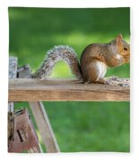 Hello Are You Gonna Eat All That? Chipmunk And Squirrel Fleece Blanket