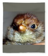 Hello Chick Fleece Blanket