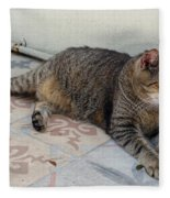Hemingway Polydactyl Cat Fleece Blanket