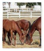 Herd Of Horses Ranch Scene Fleece Blanket