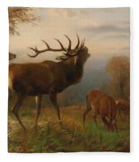 Herd Of Red Deer Fleece Blanket