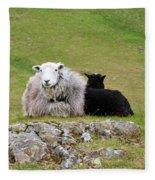 Herdwick Sheep On A Hillside In Cumbria Fleece Blanket