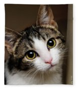 Here Kitty Kitty Fleece Blanket