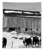 Hereford Barn Bw Fleece Blanket