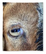 Here's Looking At You Kid - The Truth About Goats' Eyes Fleece Blanket