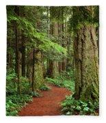 Heritage Forest 2 Fleece Blanket