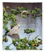 Heron Fishing In The Everglades Fleece Blanket