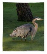 Heron In Dark Pond Fleece Blanket