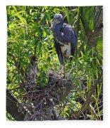 Heron With Chick In Nest Fleece Blanket