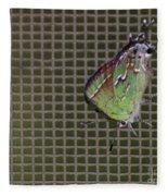 Hessel's Hairstreak Butterfly Fleece Blanket