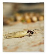 Hey Ant Dragging An Oat Seed Fleece Blanket