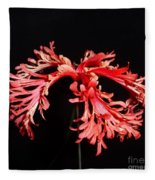 Hibiscus 1 Fleece Blanket