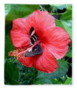 Hibiscus And Butterfly Diners Fleece Blanket