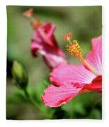 Hibiscus Bloom Fleece Blanket