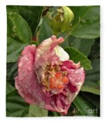 Hibiscus Bloom Closed In The Rain   End View      May           Indiana      Fleece Blanket