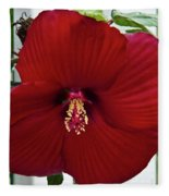 Hibiscus By Picket Fence Fleece Blanket