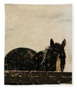 Hickory Fleece Blanket