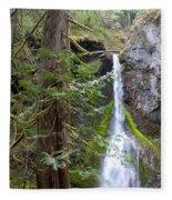 Hidden Rainforest Treasure Fleece Blanket