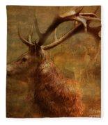 Hide And Seek 2015 Fleece Blanket