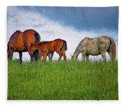 High Browsers Fleece Blanket
