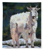 High Country Friend Fleece Blanket
