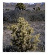 High Desert Country Fleece Blanket