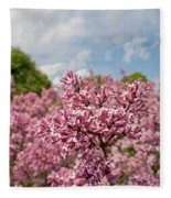 Highland Park Lilacs Detail Rochester Ny Fleece Blanket