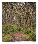 Hiking On Rangitoto New Zealand Fleece Blanket