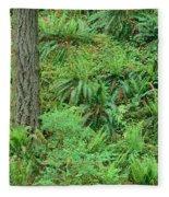 Hillside Ferns Fleece Blanket