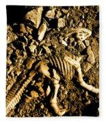History Unearthed Fleece Blanket