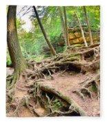 Hocking Hills Ohio Old Man's Gorge Trail Fleece Blanket