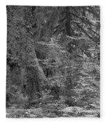 Hoh Rain Forest 3369 Fleece Blanket