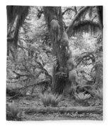 Hoh Rain Forest 3381 Fleece Blanket