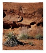 Holes - Yucca - Kodachrome Basin Fleece Blanket