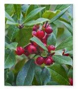 Holly Berries Fleece Blanket