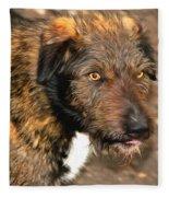 Homeless Dog Charlick Fleece Blanket