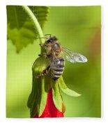 Honey Bee 11 Fleece Blanket