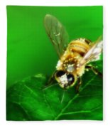 Honey Bee Fleece Blanket