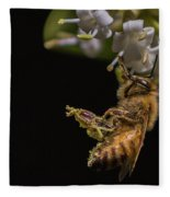 Honey Bee Kick, Apis Mellifera Fleece Blanket