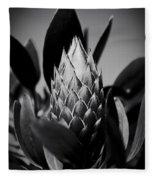 Honey Pot King Sugar Bush Protea Fleece Blanket